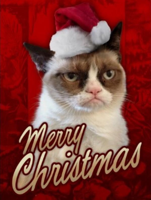 Grumpy Cat Presents