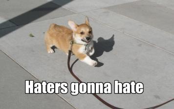 haters_anya